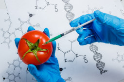 How to Become an Agricultural or Food Scientist